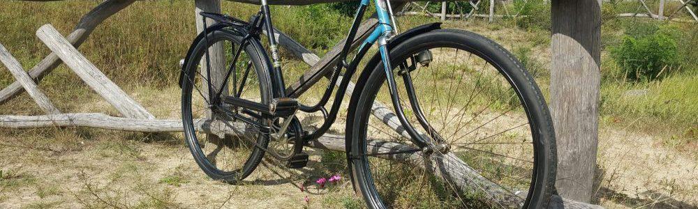 Oldtimer Fahrrad Diamant Damenfahrrad Modell 106