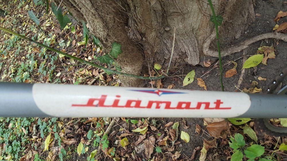 Diamant Sportfahrrad Diamant Dekor